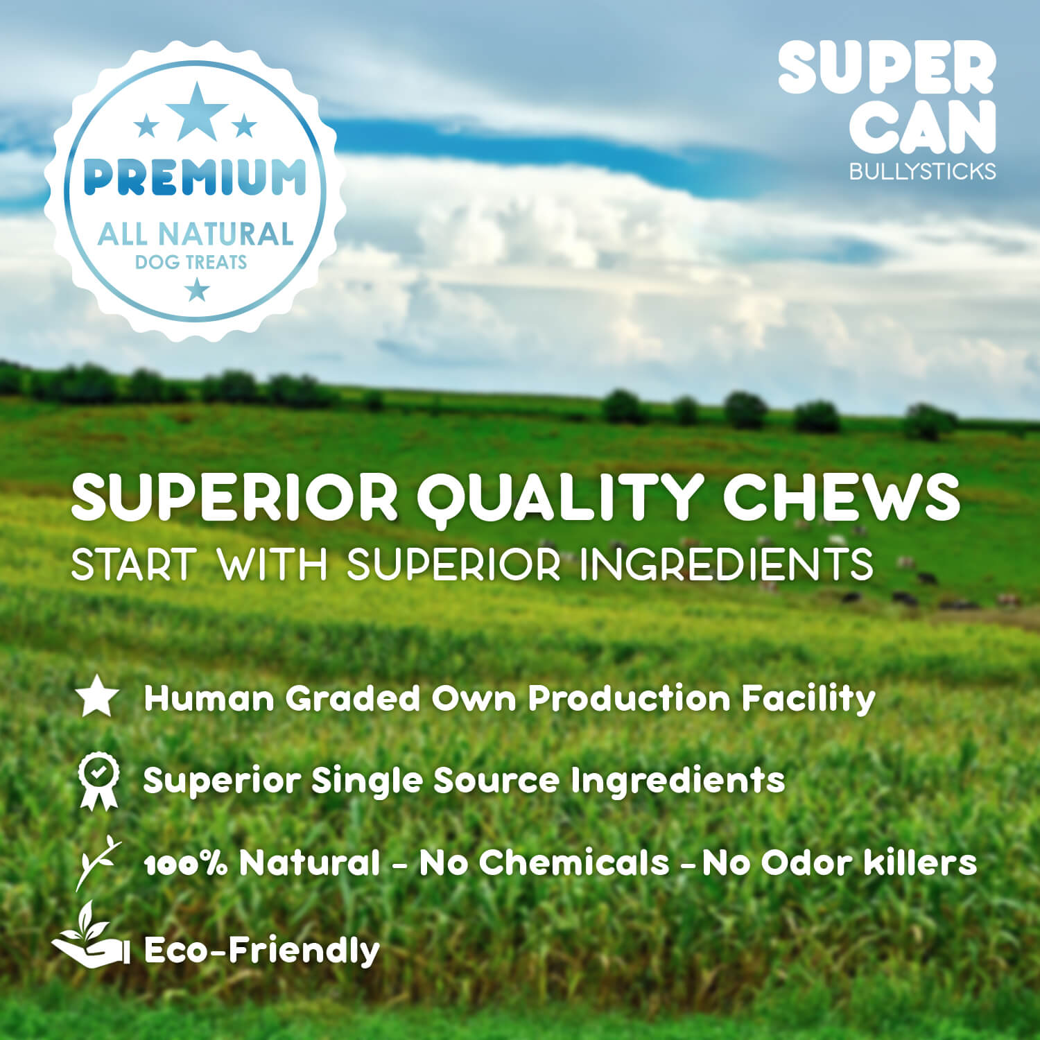 SuperCan Benefits Dog Treats Healthy for dogs